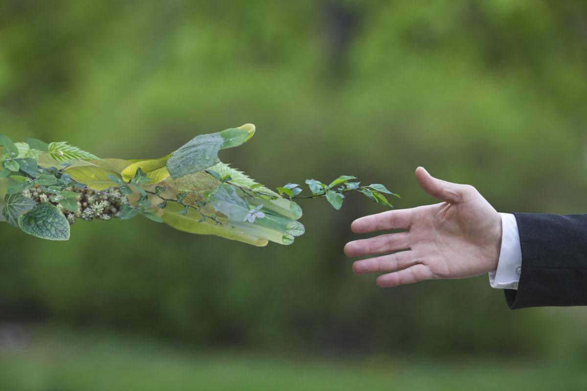 Reciclagem: cinco mitos desmistificados